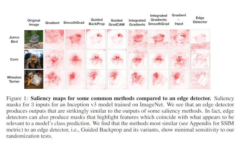 saliency map image